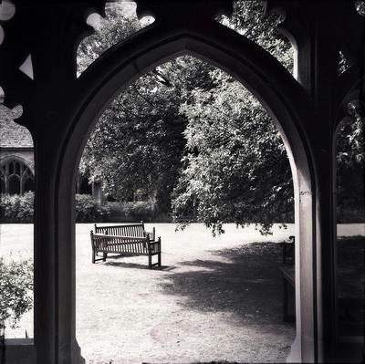 New College garden